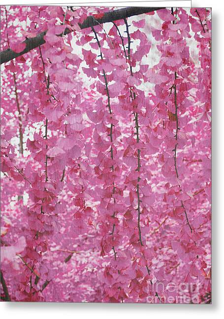 Pink Flower Prints Greeting Cards - Spring Showers in Pink Greeting Card by Anahi DeCanio