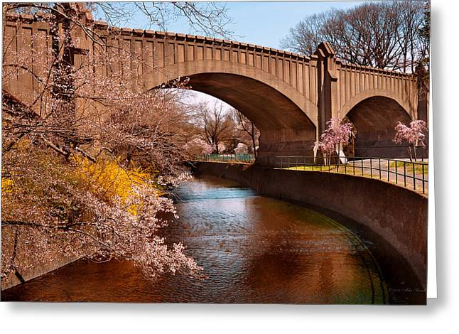 Pink Flower Branch Greeting Cards - Spring - Springtime in Newark Greeting Card by Mike Savad