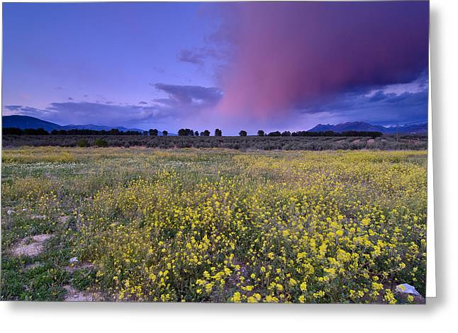 Spain Greeting Cards - Spring storm at Andalucia Greeting Card by Guido Montanes Castillo