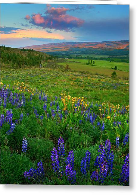 Hillsides Greeting Cards - Spring Storm Passing Greeting Card by Mike  Dawson