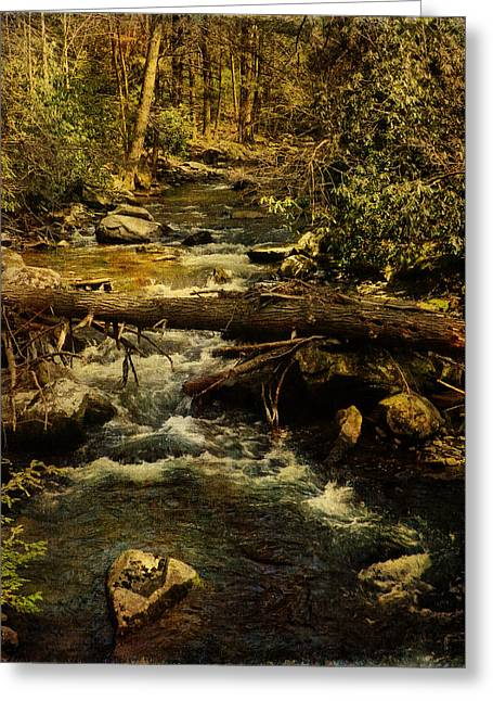 Ladnscape Greeting Cards - Spring Stream Release Greeting Card by Pamela Phelps
