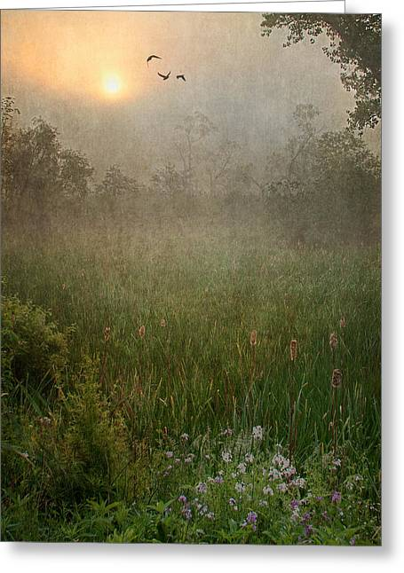 Texture Flower Greeting Cards - Spring Sunrise In The Valley Greeting Card by Dale Kincaid