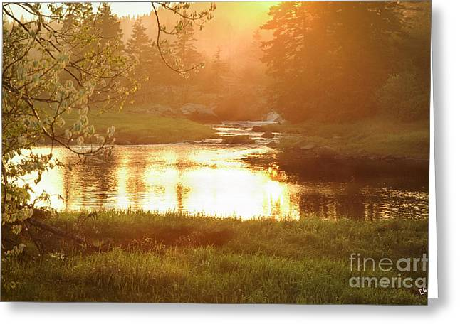 Spring In Maine Photographs Greeting Cards - Spring Sunset Greeting Card by Alana Ranney