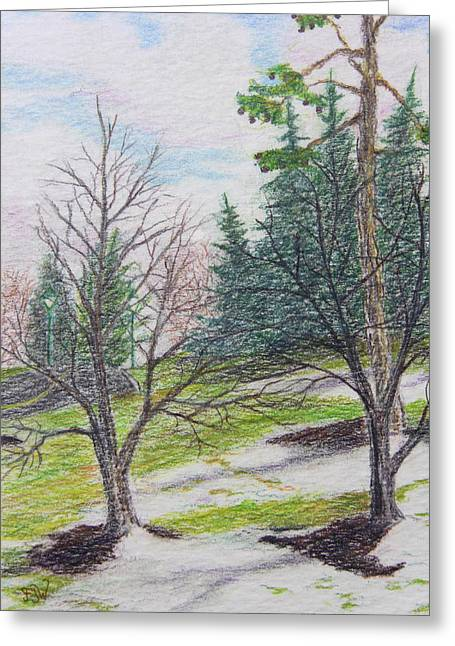 Bare Trees Drawings Greeting Cards - Spring Thaw Greeting Card by Frank Warsinski