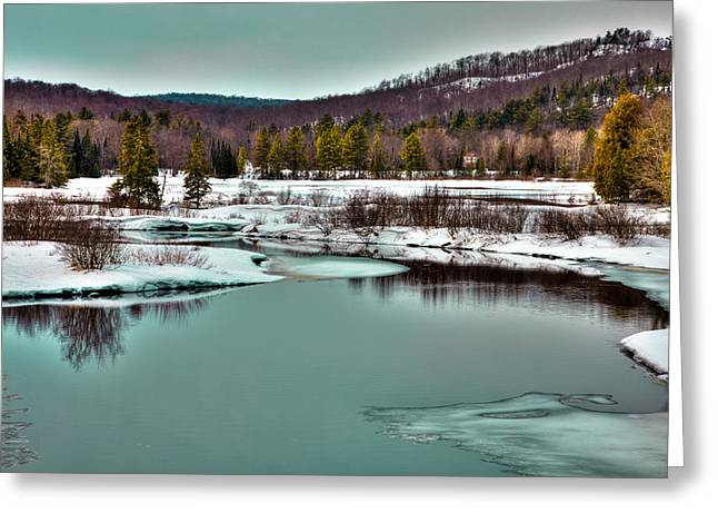 Evergreen Covered In Snow Greeting Cards - Spring Thaw on the Moose River II - Old Forge New York Greeting Card by David Patterson