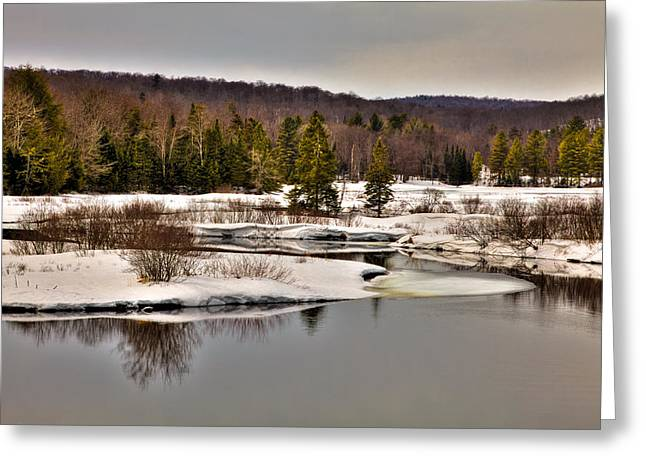 Evergreen Covered In Snow Greeting Cards - Spring Thaw on the Moose River - Old Forge New York Greeting Card by David Patterson