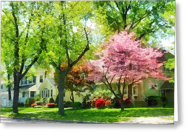 Suburban Greeting Cards - Spring - The Trees Are Flowering On My Street Greeting Card by Susan Savad