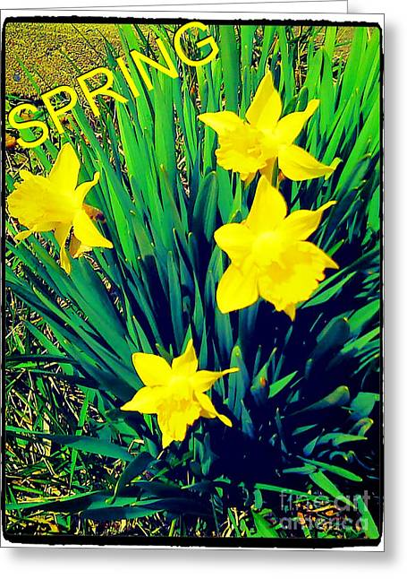 Tlm Greeting Cards - SpRiNg Greeting Card by Thommy McCorkle