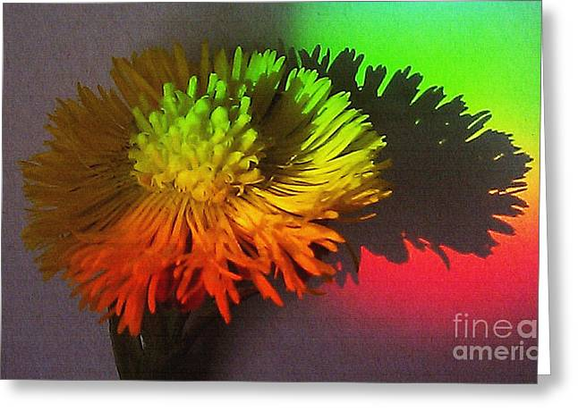 Medical Greeting Cards - Spring Through A Rainbow Greeting Card by Martin Howard