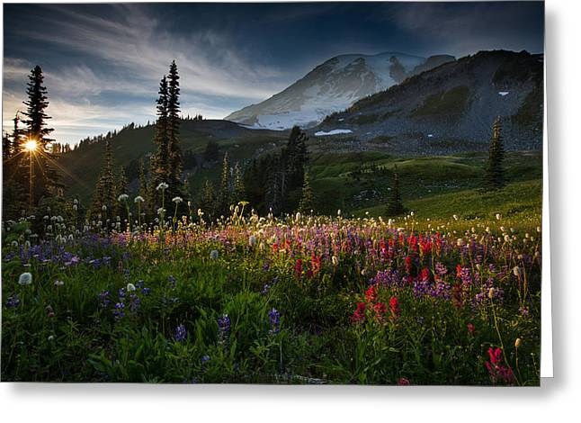 Spring Time At Mt. Rainier Washington Greeting Card by Larry Marshall
