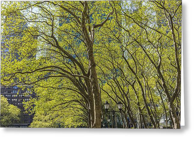 Bryant Greeting Cards - Spring Time in Bryant Park New York Greeting Card by Angela A Stanton