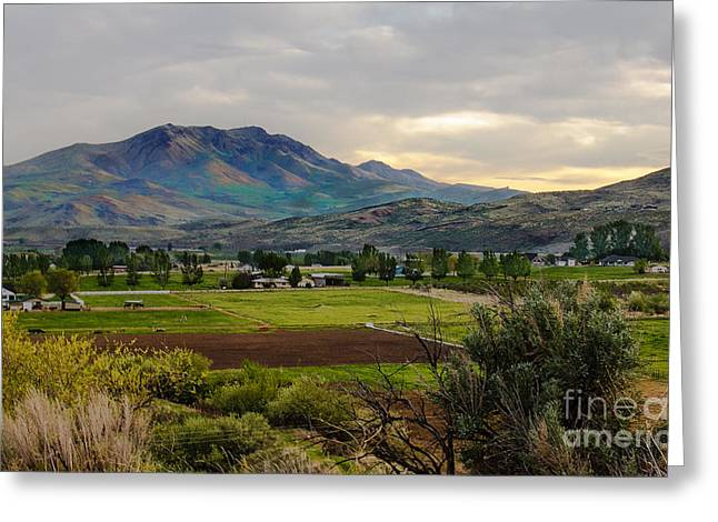 Haybale Greeting Cards - Spring Time in the Valley Greeting Card by Robert Bales