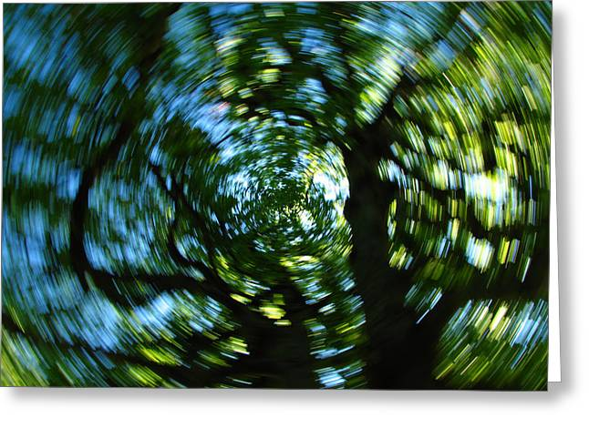 Spring Tree Carousel Greeting Card by Juergen Roth