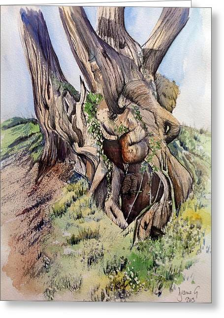 Tree Roots Paintings Greeting Cards - Spring tree Greeting Card by Diane Milroy