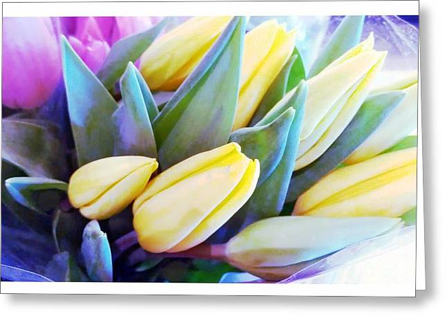 Frizzell Greeting Cards - Spring Tulips Greeting Card by Michelle Frizzell-Thompson