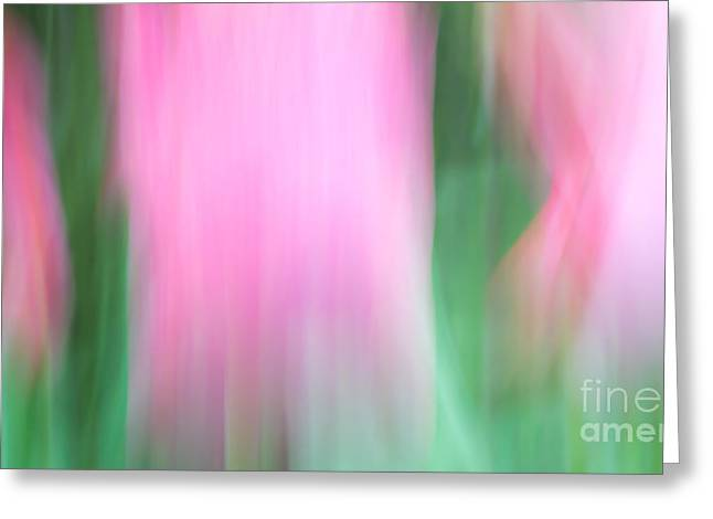 Easter Flowers Greeting Cards - Spring Tulips Motion Blur Abstract Greeting Card by Edward Fielding