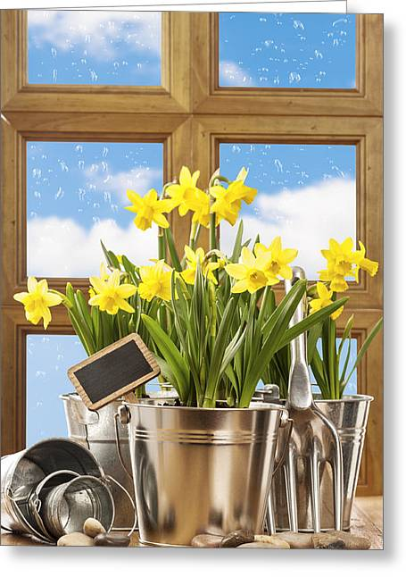 Gardening Tools Greeting Cards - Spring Window Greeting Card by Amanda And Christopher Elwell