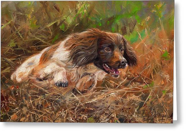 Dogs In Art Greeting Cards - Springer Spaniel 2 Greeting Card by David Stribbling