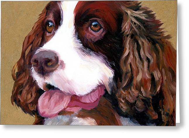 Dog Portraits Greeting Cards - Springer Spaniel Dog Greeting Card by Alice Leggett