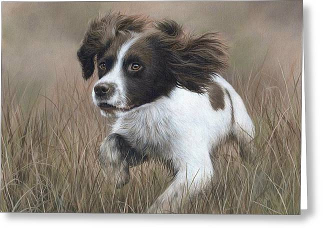Domestic Pets Greeting Cards - Springer Spaniel Painting Greeting Card by Rachel Stribbling