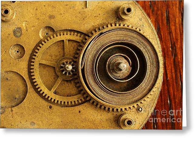 Disassembled Greeting Cards - Springs and Gears Greeting Card by Adam Long
