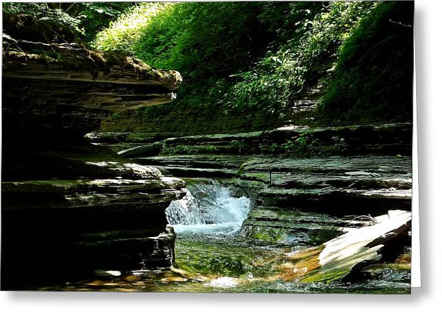 Springs Of Living Water Greeting Card by Christian Mattison