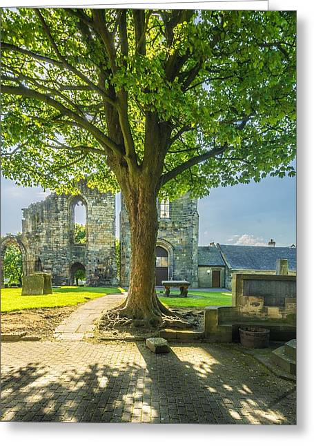 Historic Site Greeting Cards - Springtime at Kilwinning Abbey Ayrshire Greeting Card by Tylie Duff
