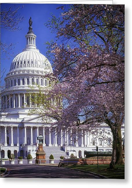 U.s. Capitol Dome Greeting Cards - Springtime at the U.S. Capitol Greeting Card by Mountain Dreams