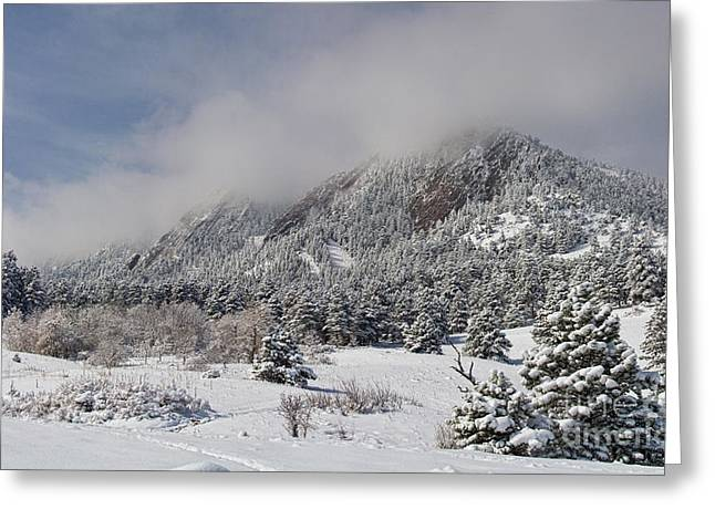 Springtime Colorado Rocky Mountains Boulder Greeting Card by James BO  Insogna