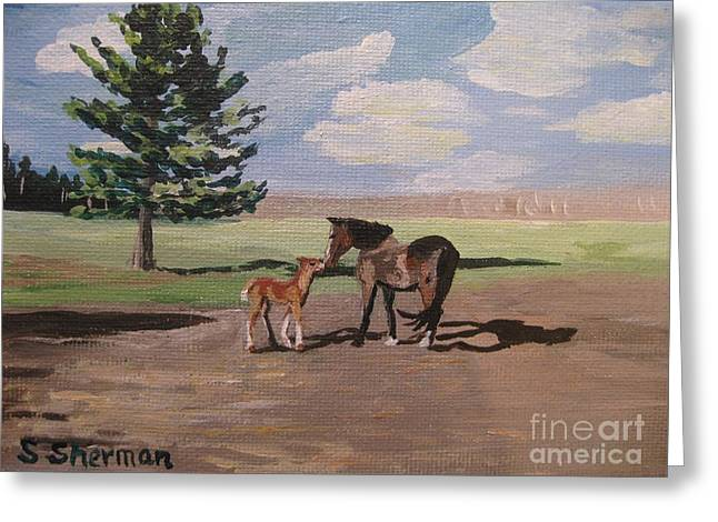 Stella Sherman Greeting Cards - Springtime Foal Greeting Card by Stella Sherman