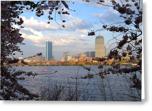 Boston Ma Greeting Cards - Springtime in Boston Greeting Card by Toby McGuire