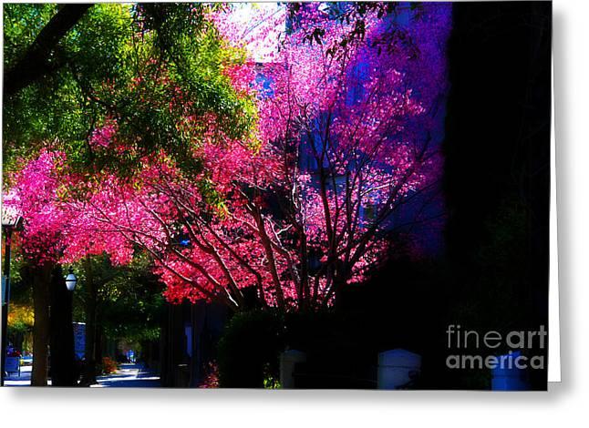 Springtime In Charleston Greeting Card by Susanne Van Hulst