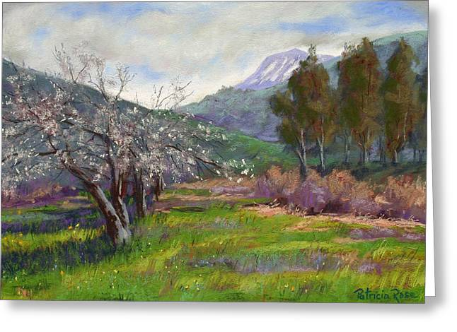 Mt Pastels Greeting Cards - Springtime in Mias Canyon Greeting Card by Patricia Rose Ford