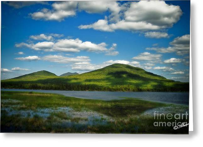 Springtime In The Bigelow Mountains Greeting Card by Alana Ranney