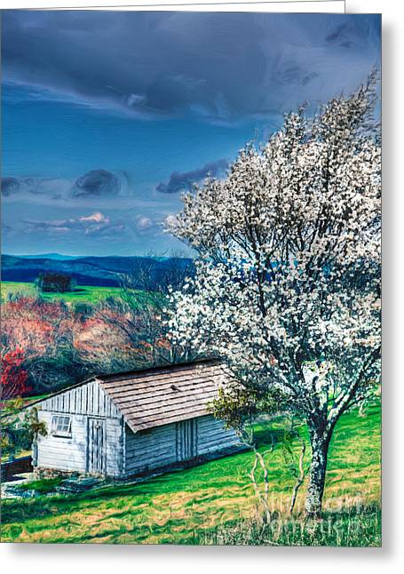 Cabin Wall Greeting Cards - Springtime in the Blue Ridge Mountains II Greeting Card by Dan Carmichael