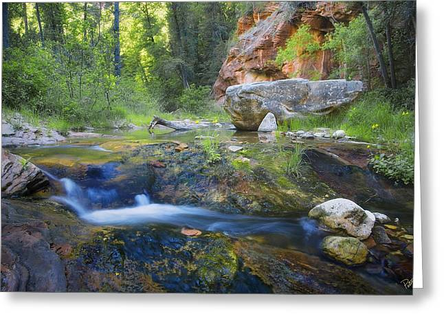 West Fork Greeting Cards - Springtime in the Canyon Greeting Card by Peter Coskun