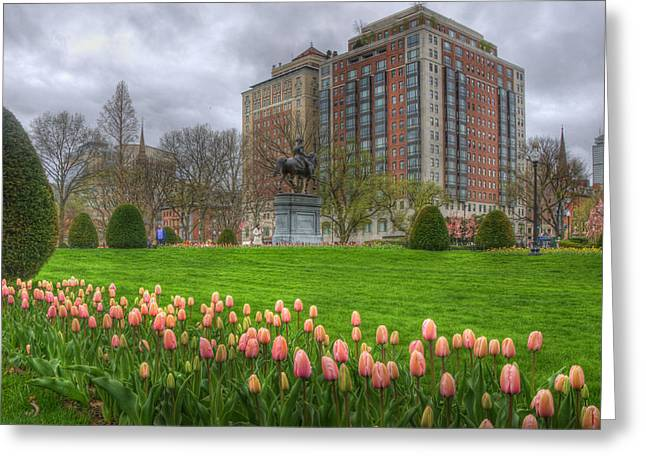 Spring Scenes Greeting Cards - Springtime in the Public Garden - Boston Greeting Card by Joann Vitali
