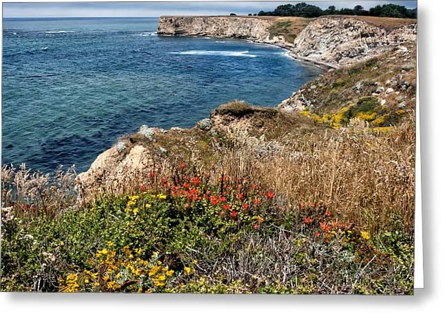 Pacific Ocean Prints Digital Art Greeting Cards - Springtime on the California Coast Greeting Card by Kathleen Bishop