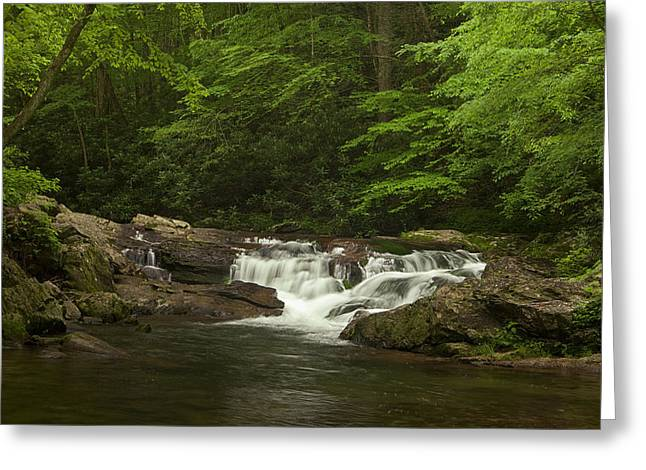 Springtime Rapids Greeting Card by Andrew Soundarajan