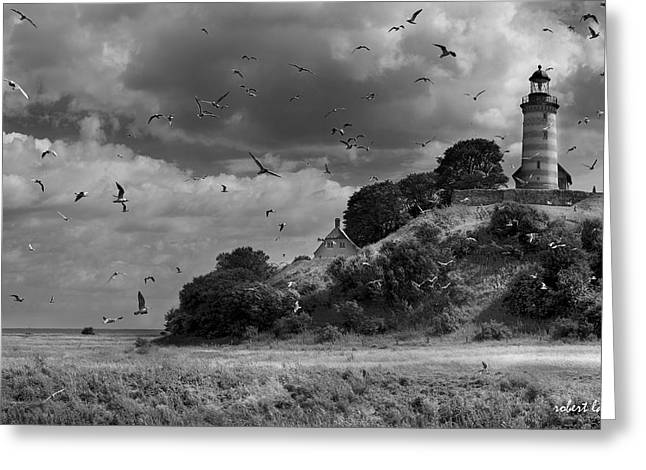 Seabirds Greeting Cards - Sprogoe Lighthouse Greeting Card by Robert Lacy