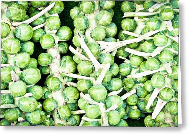 Brussel Greeting Cards - Sprouts Greeting Card by Tom Gowanlock