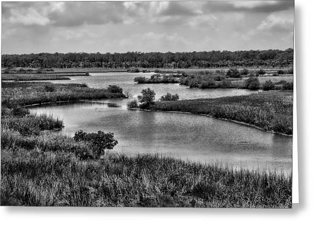 Openness Greeting Cards - Spruce Creek 9 Greeting Card by Michael Schwartzberg
