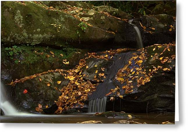 Watershed Greeting Cards - Spruce Flats Falls In Autumn Greeting Card by Dan Sproul