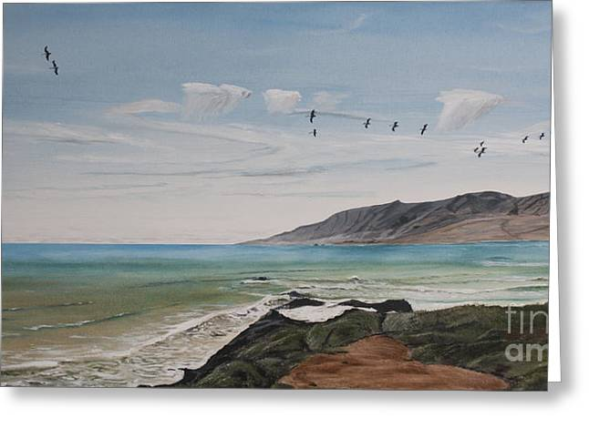 Ian Donley Greeting Cards - Squadron of Pelicans Central Califonia Greeting Card by Ian Donley