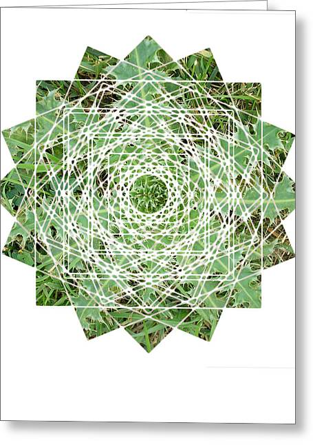 Sacred Geometry Greeting Cards - Squares Greeting Card by Sacred Geometry