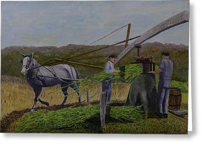 Squeezing Sorghum For Sugar Greeting Card by Clifford Cox