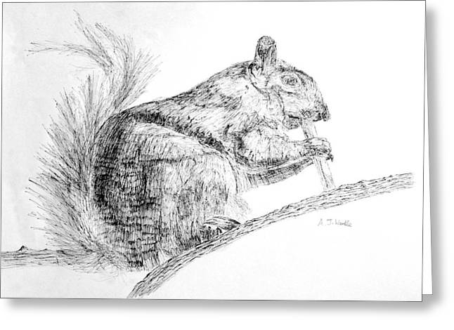 Squirrel Drawings Greeting Cards - Squirrel Greeting Card by Adam Wardle