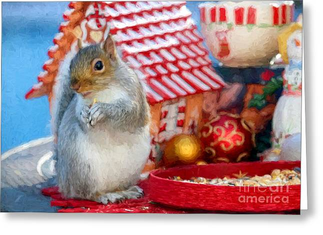 Pause Greeting Cards - Squirrel at Christmas Greeting Card by Jayne Carney