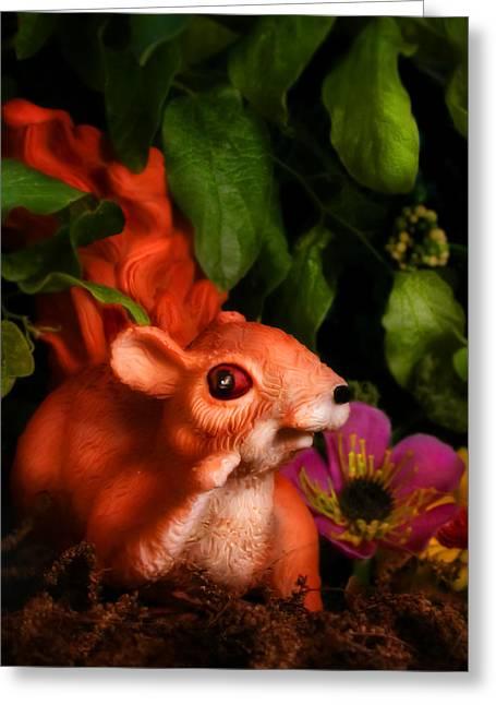 Anthropomorphism Greeting Cards - Squirrel Greeting Card by Diane Bradley