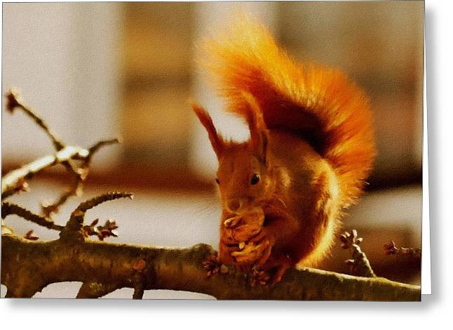 Commercial Photography Pastels Greeting Cards - Squirrel H b Greeting Card by Gert J Rheeders